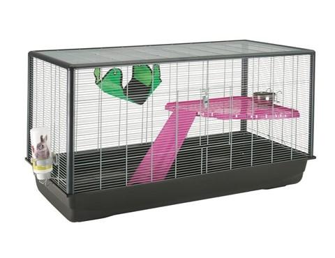 cage rat (480 x 370)