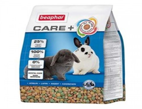 care+ lapin (480 x 370)
