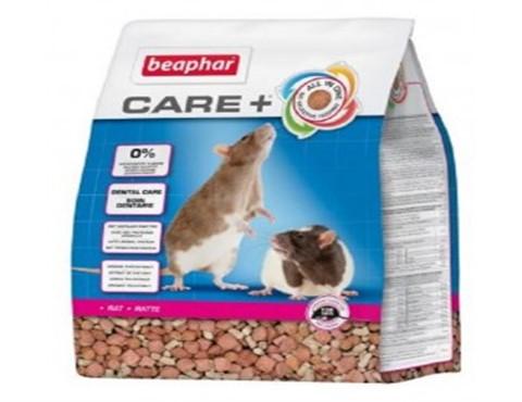care+ rat (480 x 370)